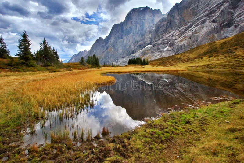 Download The Bog Is High In Mountains Stock Image - Image: 12211213