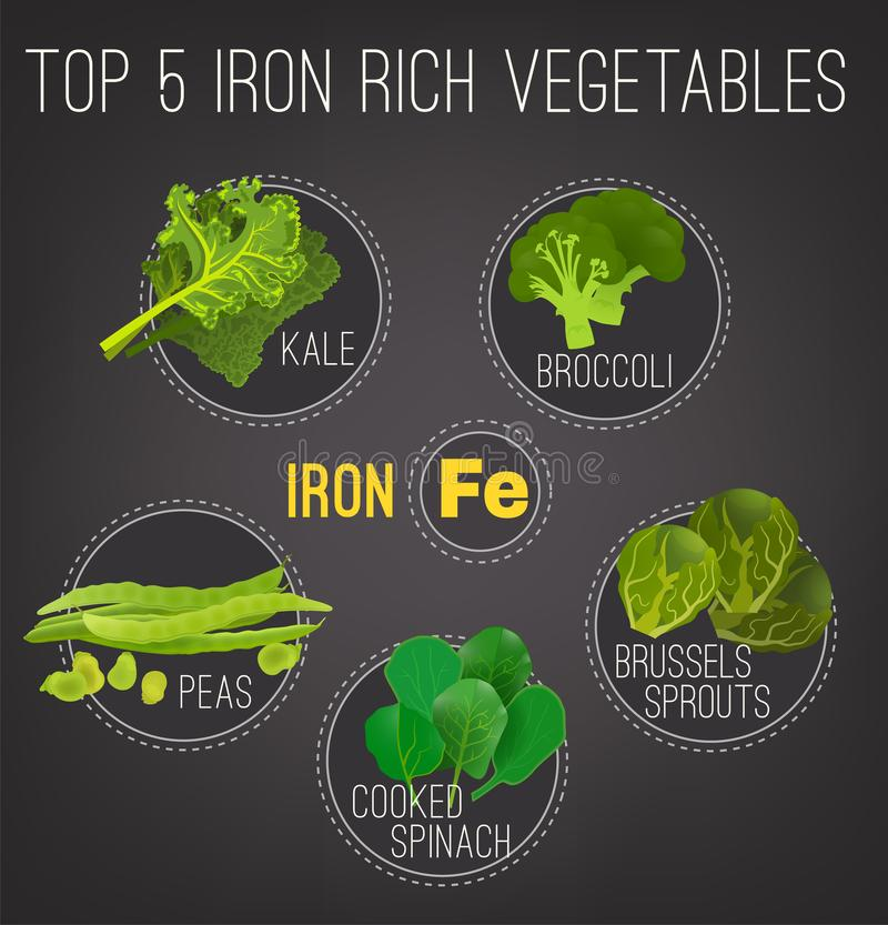 bogactw Foods Plakatowi ilustracja wektor