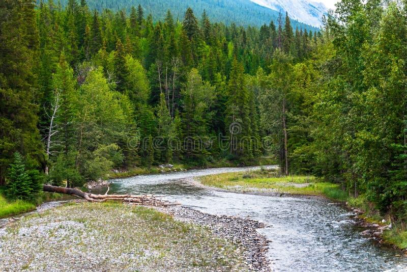 Bogen-Fluss in Banff, Kanada lizenzfreies stockbild