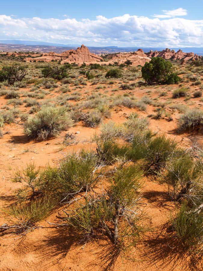 Bogen nationaal park, Utah, de V royalty-vrije stock foto's
