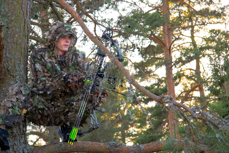 Bogenjäger im Baum stockfotos
