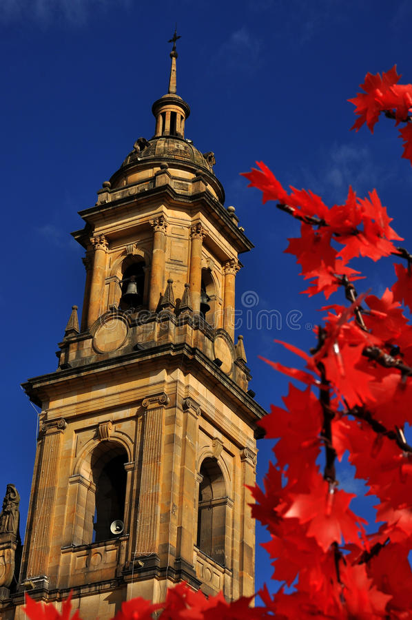 Free Bogota Cathedral Spire Stock Images - 27698774