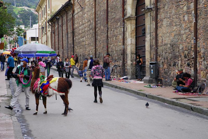 BOGOTA COLOMBIA, JUNI 28, 2019: Svart lama på en gata i Bogota arkivfoton