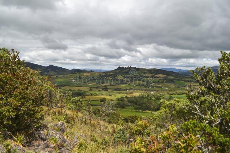 Bogota-Feld stockfotografie