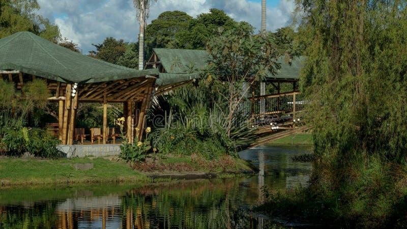 Bogota ogród botaniczny zdjęcia royalty free