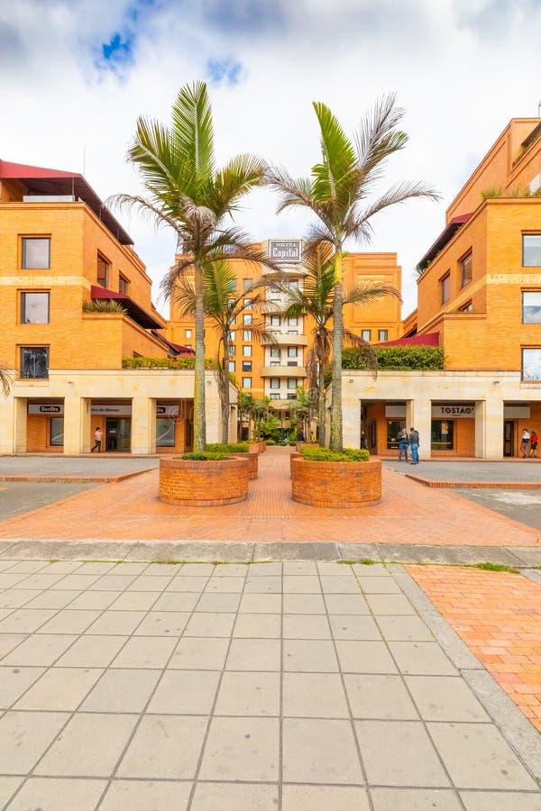 Bogota-Stadtpalmen im Fußgängerweg in EL-dorado Allee lizenzfreie stockfotos