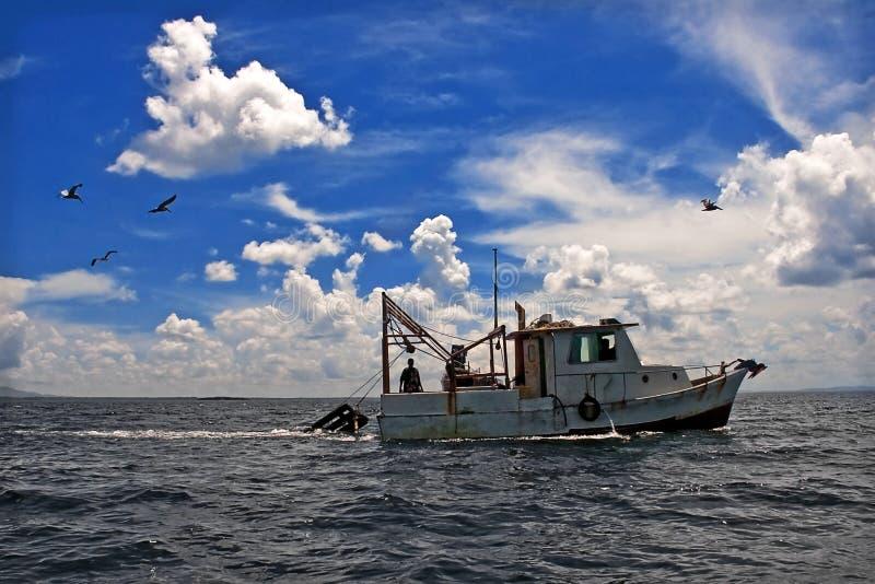 bogsera för fartygfiske royaltyfri fotografi