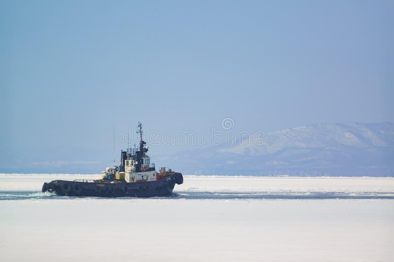 Bogserbåten seglar bland isen arkivbild