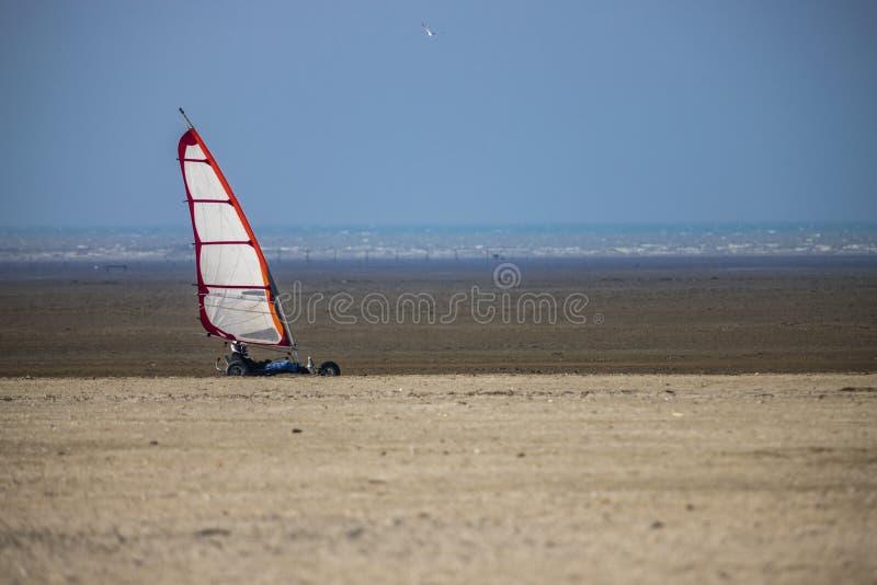 Boguet de cerf-volant sur la plage images stock