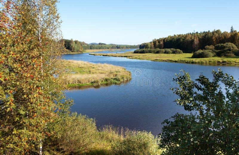 bohemia jeziora lipno fotografia royalty free