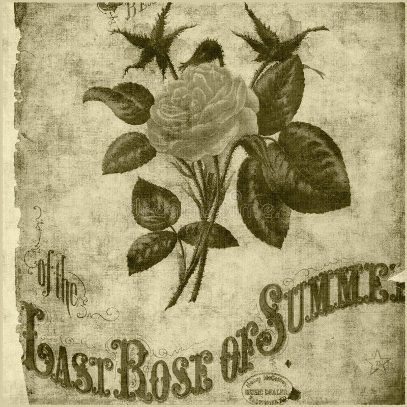 bohemisk blom- rose stil för bakgrund stock illustrationer