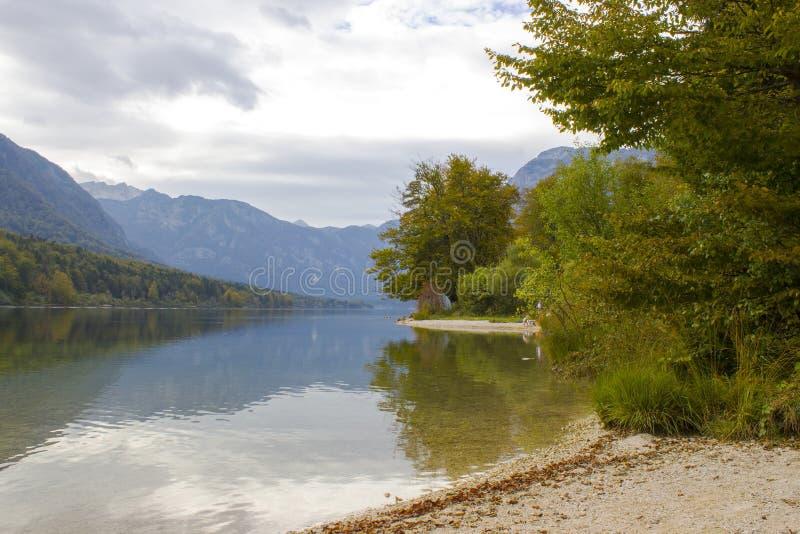 bohinj湖斯洛文尼亚 免版税库存照片