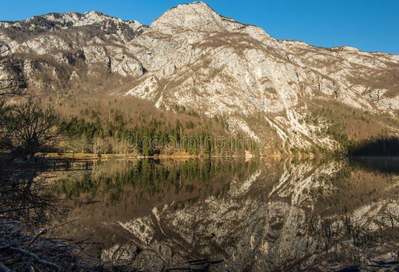 Bohinj湖 库存照片
