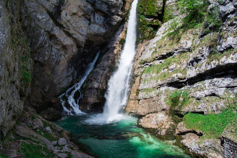 Bohinj lake, Slovenia, Europe royalty free stock photos