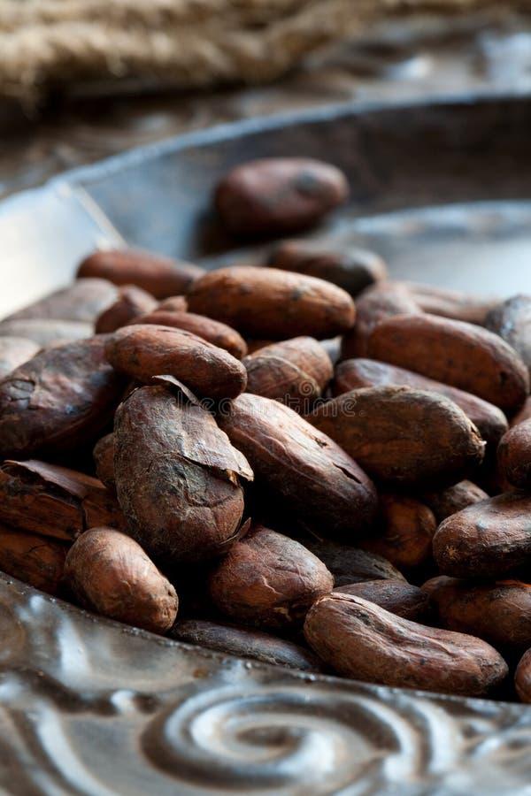 Bohnen des Kakaos (Kakao) lizenzfreie stockbilder