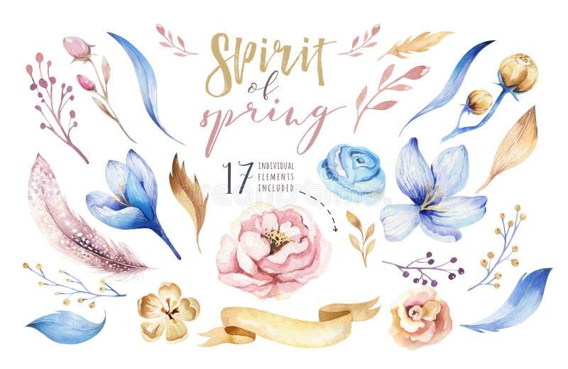Boho花集合 与叶子和花,画的水彩的五颜六色的花卉收藏 春天或夏天花束设计 库存例证