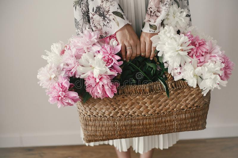 Boho girl holding pink and white peonies in rustic basket. Stylish hipster woman in bohemian floral dress gathering peony flowers royalty free stock photos