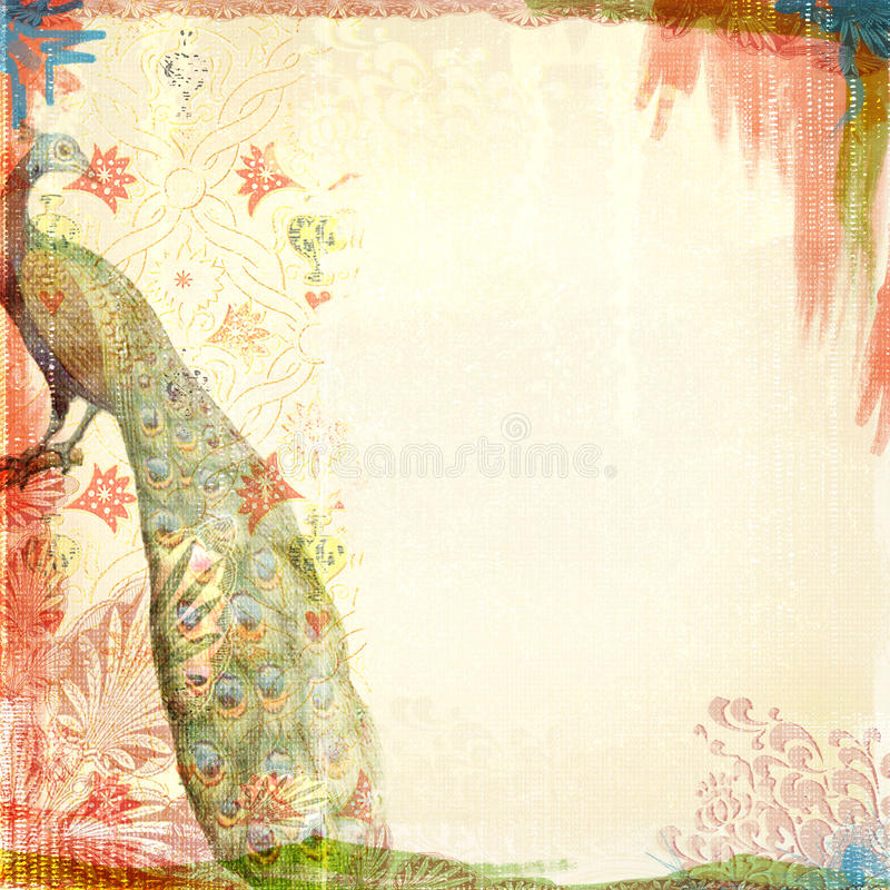 Boho Teatime Grunge Paper Background Tan Red Peacock royalty free stock photo