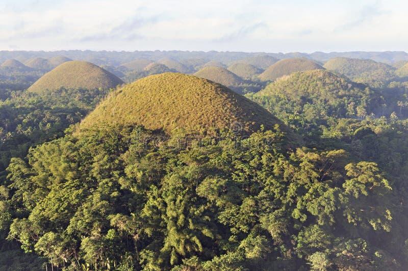 boholchokladkullar philippines arkivfoto