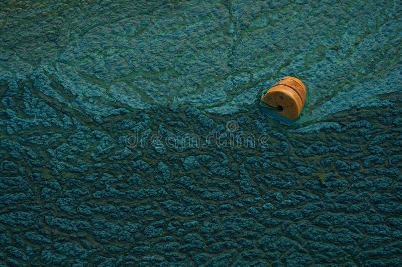Boia alaranjada nas ondas como um símbolo da ajuda e da esperança Fundo verde Textura da lama Sumário imagem de stock royalty free