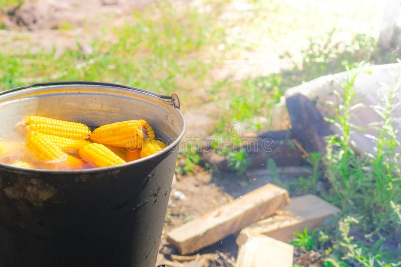 Boil corn in boiling water on a fire.  stock images