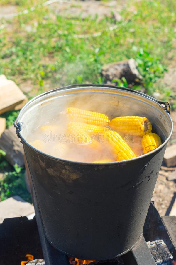 Boil corn in boiling water on a fire.  stock photo