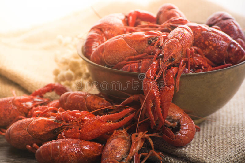 Boiled big crawfish on the wooden surface. Plate of boiled crawfish on wooden surface royalty free stock images