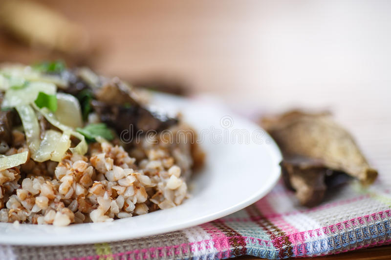 Boiled buckwheat with mushrooms stock photo