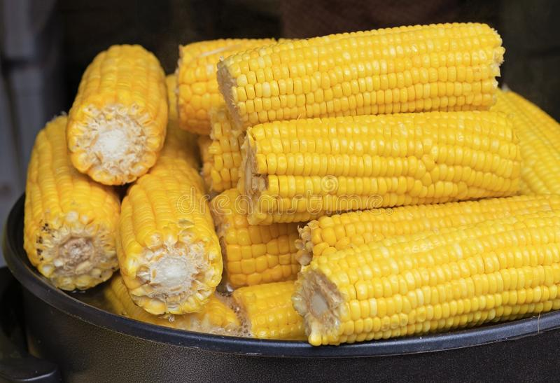 Boiled corn on the cob. Hot freshly cooked corn. Cereal crops concept stock photo