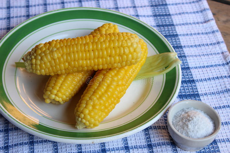 Boiled corn on plate royalty free stock images