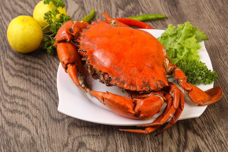 Boiled crab stock image