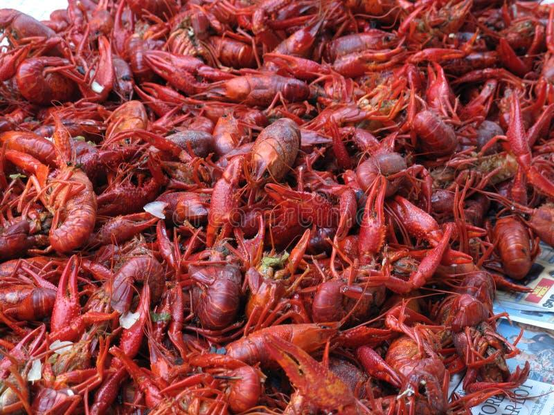Boiled crawfish stock images