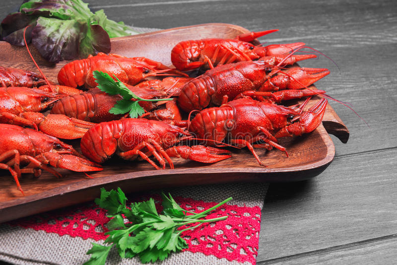Boiled crawfish, beer snacks. Cancers to beer, dill, boiled crawfish, beer snacks, green leaves of fresh lettuce, parsley on wooden tray, black dark wooden stock images