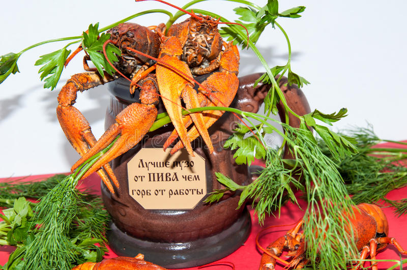 Boiled crayfish beer snack. .. Boiled crayfish a good snack to beer stock photography