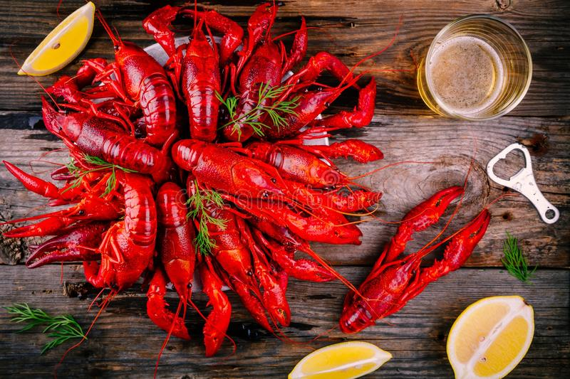 Boiled crayfish with dill and beer. On wooden background stock photography