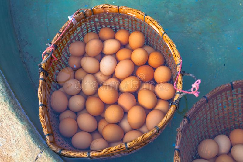 boiled eggs in hot spring royalty free stock image
