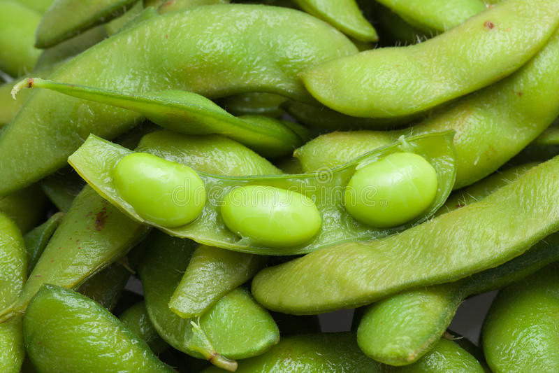 Boiled green soy bean japanese food royalty free stock images