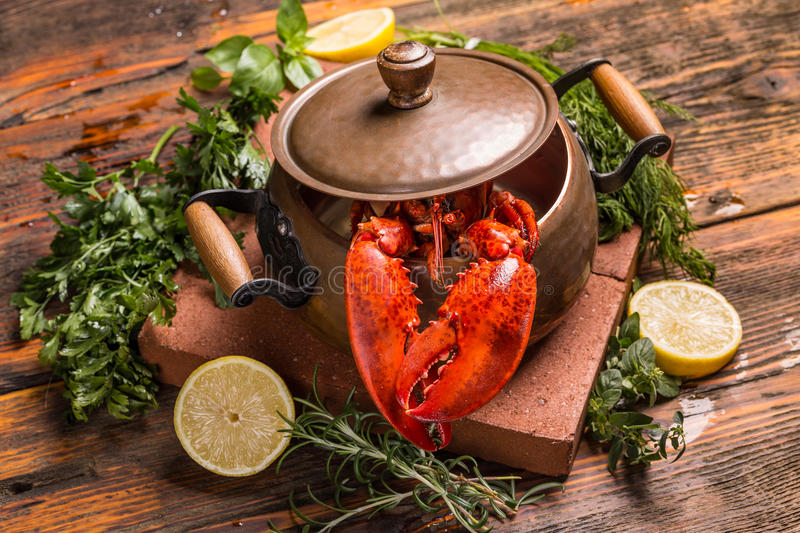 Boiled lobster. With lime and fresh green herbs stock photos