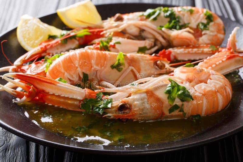 Boiled Nephrops norvegicus, Norway lobster, Dublin Bay prawn, la stock photo