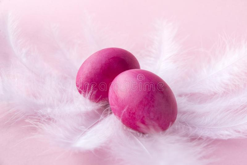2 pink Easter eggs on white feathers on pink background, boiled painted eggs stock images