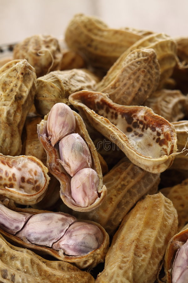 Download Boiled peanut stock photo. Image of opened, close, snack - 8119632