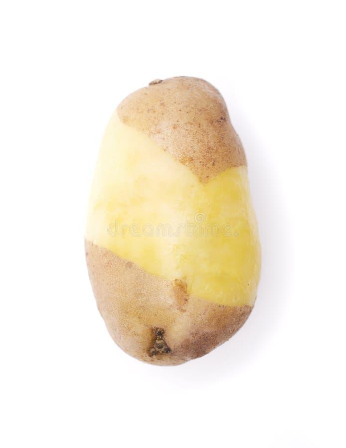 Boiled potato stock photo