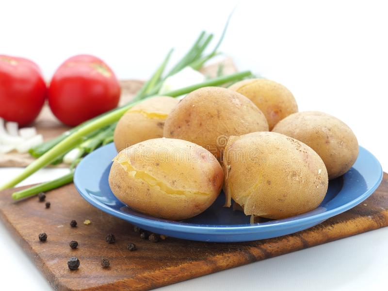 Boiled potatoes in blue dish royalty free stock photos
