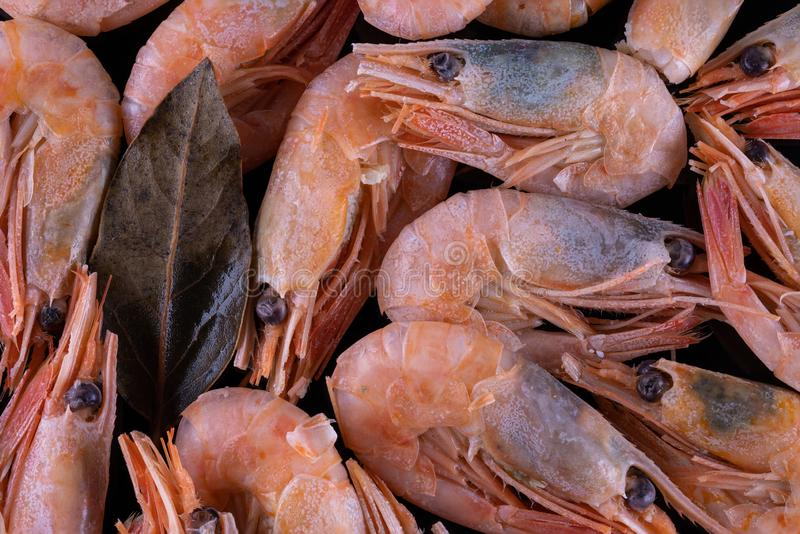 Boiled shrimp on black glass royalty free stock image