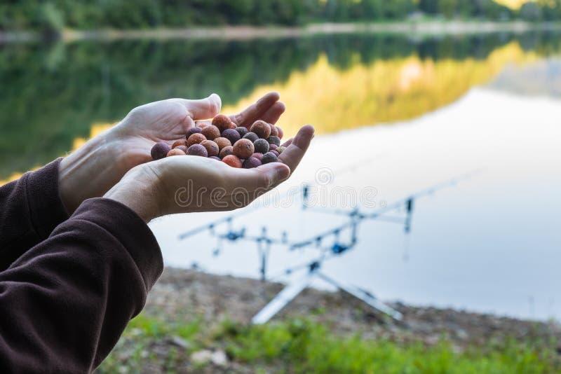 Boilies, Köder für Karpfenfischen stockbild