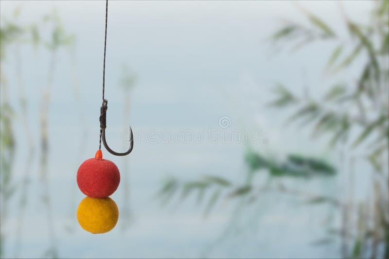 Boilies y engancha todos listos para la pesca de la carpa en el lago Copie la goma imagen de archivo libre de regalías