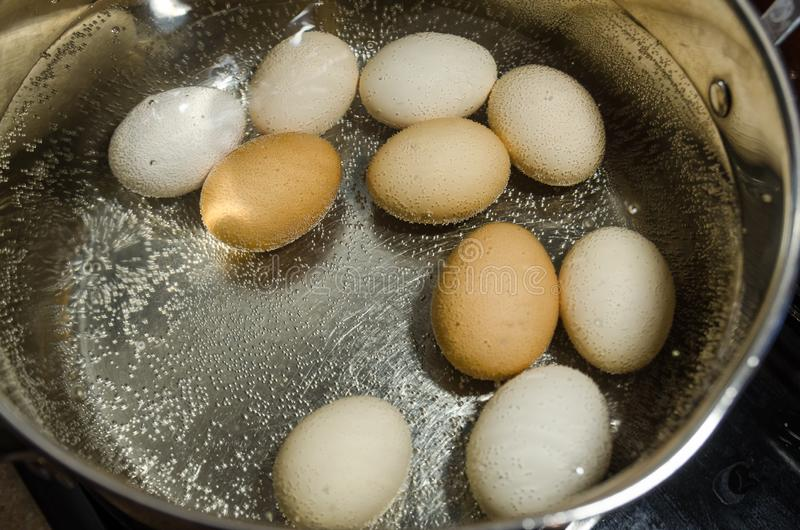 Boiling eggs in hot water in the pot royalty free stock photo