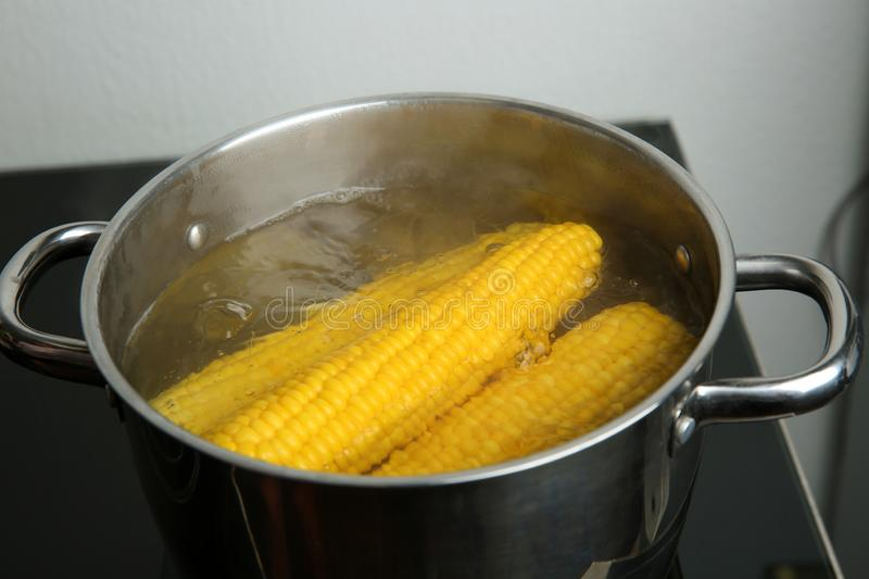 Boiling fresh corns in pot with hot water stock images