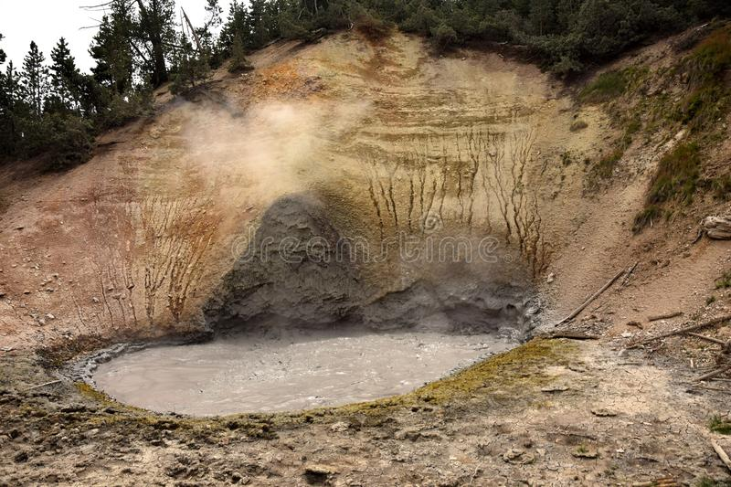Boilng volcanic mud. Boiling volcanic mud pond in Yellowstone, Wyoming royalty free stock image