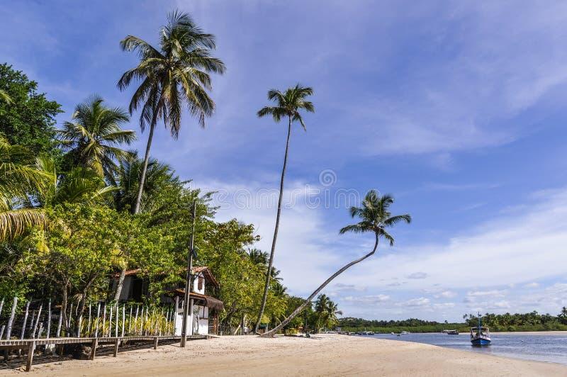 Boipeba wyspy plaża, Morro de Sao Paulo, Salvador, Brazylia zdjęcie stock